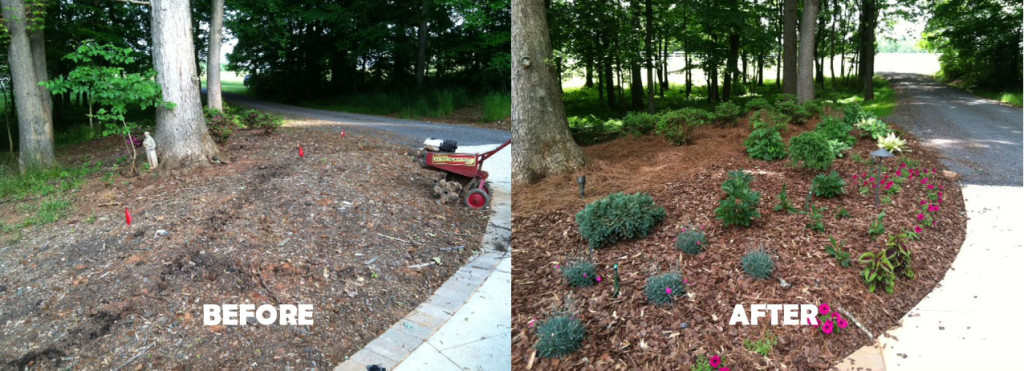 before-and-after-driveway-garden-bed
